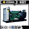 200kw Natural Gas Generator Petroleum Gas With Heat Recovery System