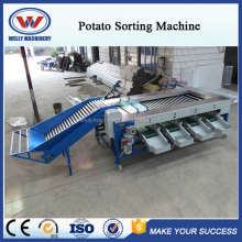 Factory price advanced design apple grader/onion grading machine/potato sorting machine