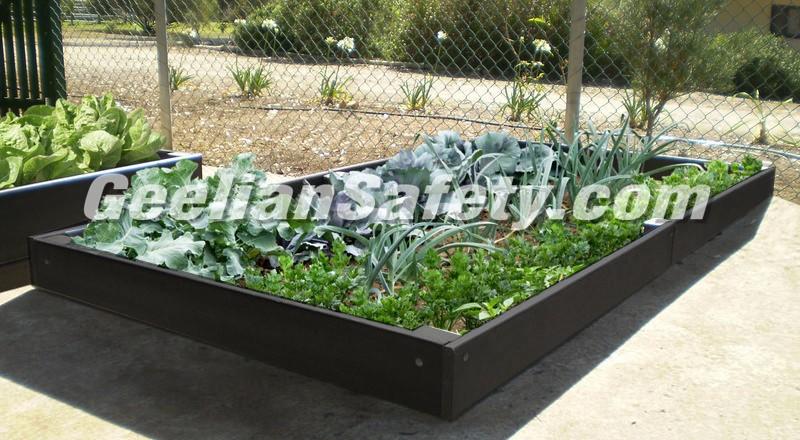 Standard-Veggie-Garden