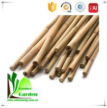 Agriculture Natural Bamboo Tonkin Poles