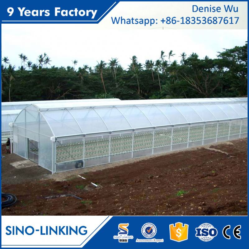 SINOLINKING Hot Sale Hydroponic Plastic Tunnel