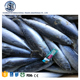 Sea frozen iqf whole round skipjack tuna bonito factory supplier