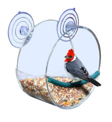 Window Bird Feeder with Removable Tray and Drain Holes, Clear Acrylic Window Mounted Bird Feeder with 3 Strong Suction Cups
