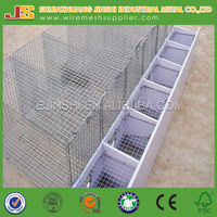 Zinc plated wire mesh mink cage factory