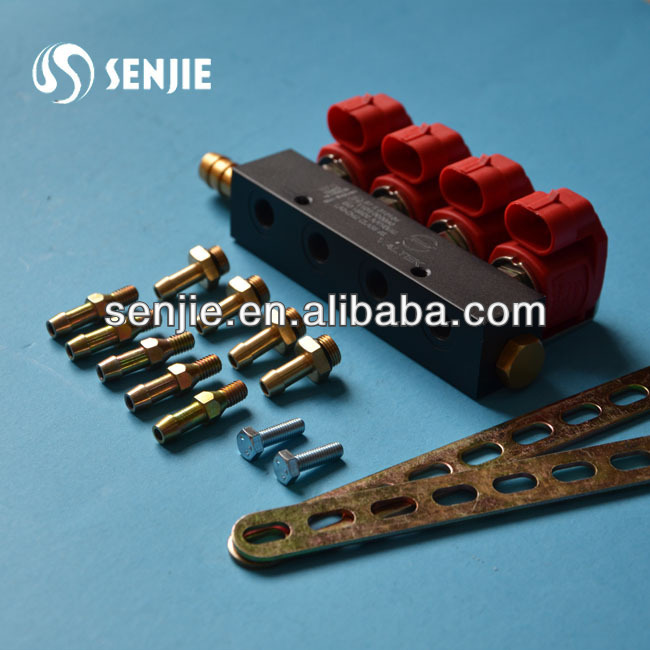 rail injector for LPG/CNG