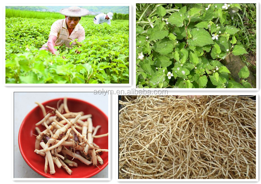 100% herbal extract composition for man's health