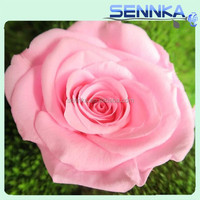 Preserved Fresh Rose head garden planting flowers everlastingly