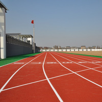 Professional Rubber Race Track for Different Types