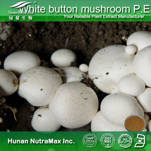 Factory supply Wild white button mushroom extract/agaricus bisporus extract/White agaricus mushroom extract plant extract