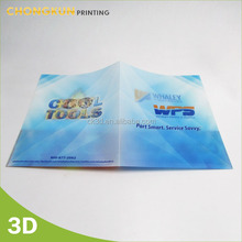 PP plastic pocket folder/a4 file/cheap pocket folders
