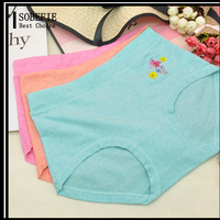 Young Girl Cotton Cute Underwear Panty Pretty Girls Stylish Wearing Middle Waist Panties Briefs