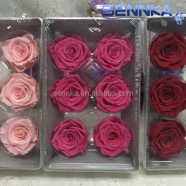 Wholesale natural fresh dried preserved rose <strong>flower</strong> for wedding decoration