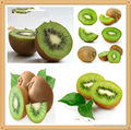 2017 hot sale High Quality Natural Organic Kiwi Extract