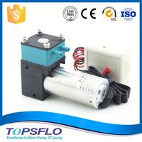 DC Brushless Motor corrosion resistance ceramic ink pump ideal for ink viscosity 40cps