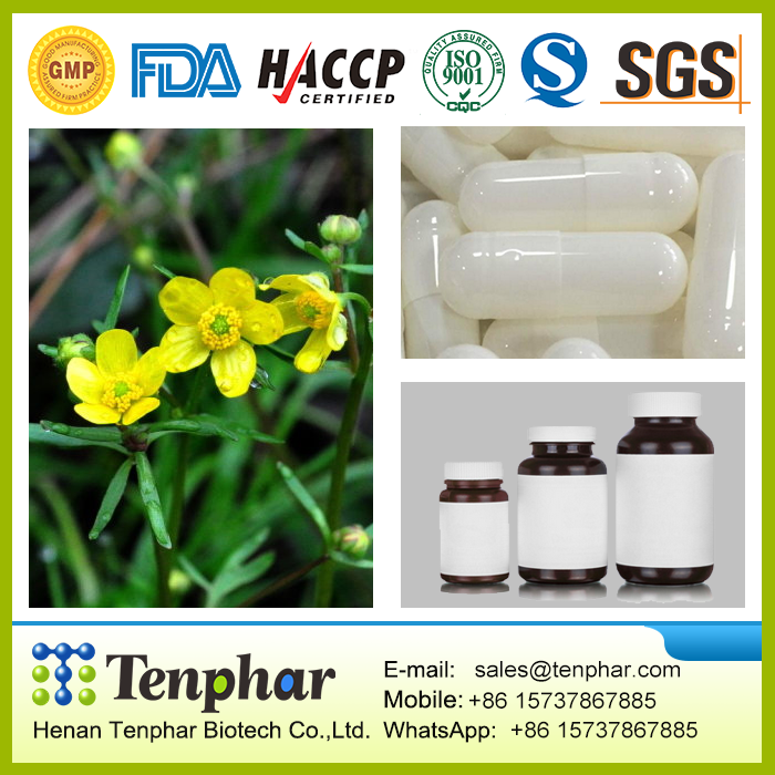 OEM Natural Chinese Diet Cats Claw Essence Pellets pills