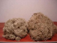Flax Waste for paper pulp- flax arrouse scutched tow short fibers .