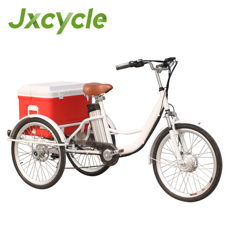 CE Pedal baggage cargo cart mini electric bike with ice packs