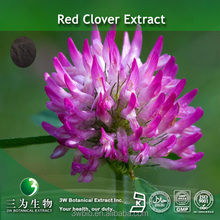 High quality red Clover Extract 8-60% Isoflavones