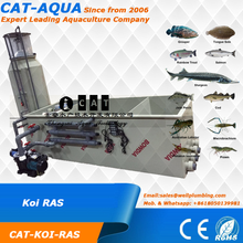 Koi pond Recirculating Aquaculture System