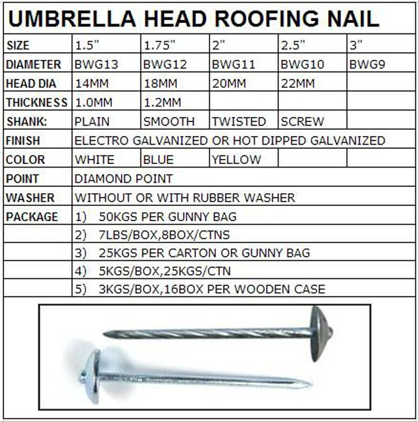 High quality Glavanized roofing nails, twisted shank umbrella head roofing nails