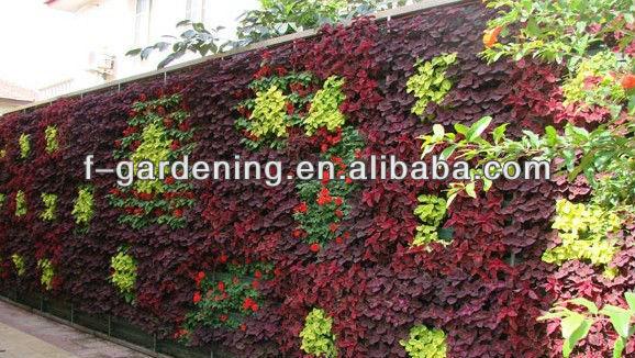verticale Verde garden wall fioriera Esterna Verticale Parete Verde ...