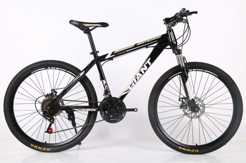 Top Quality Peerless Bicycle Trinx Mountain Bike