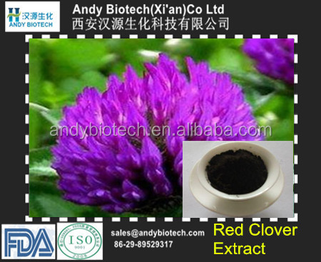 Best Selling Plant Extract Red Clover P.E. 60% Total Isoflavones