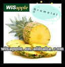 WISAPPLE GMP Bromelain Papain Active Pharmaceutical Ingredients