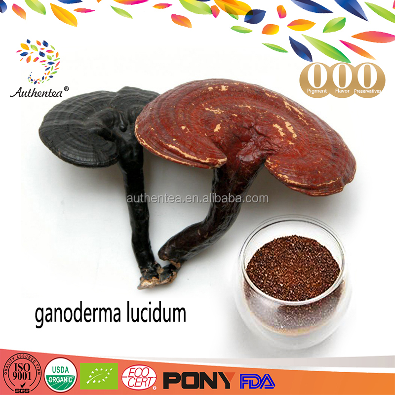Heart Enhancer Lucid Ganoderma Extract Supplement Powder