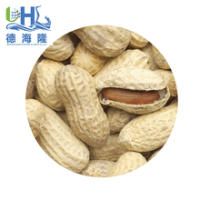 Cheap price peanuts with pod