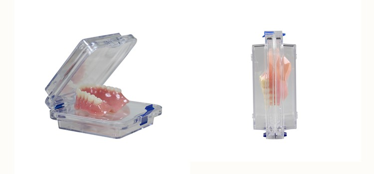 Clear Plastic Lockable Full Denture Membrane Box