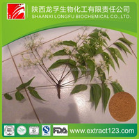 pure & natural neem seed kernel extract GMP factory