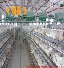Low price and high quality priceused chicken cages for sale