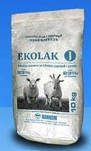 Milk replacement for lamb and kid nutrition