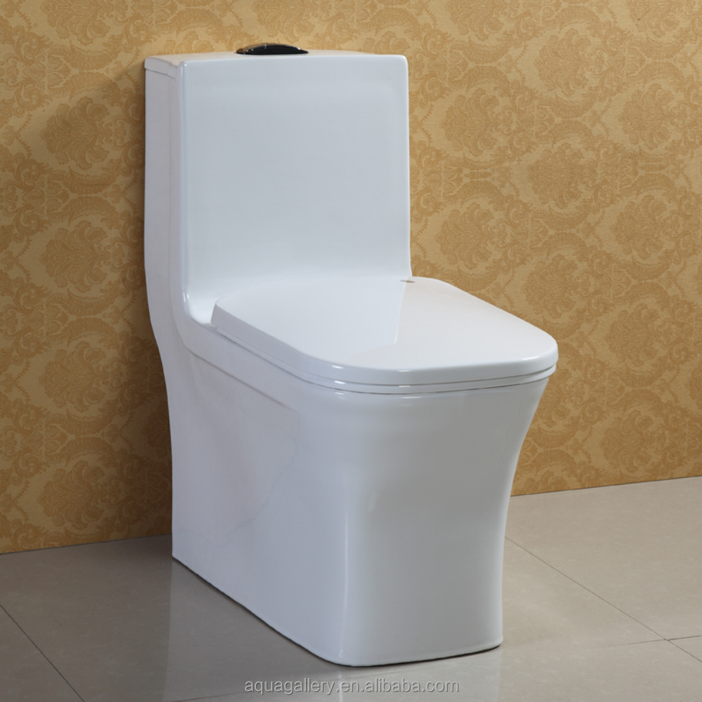 Dual Flush Floor Standing WC Toilet with Soft Close PP Seat Cover