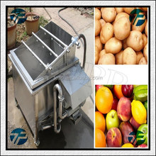 Fruit Washing Equipment Mango Washing Machine