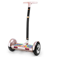 off road scooter big wheel, electronic balance car