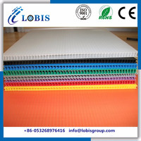 10mm Polypropylene Twin Wall PP Hollow Sheets