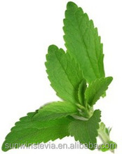 Stevia Extract Reb-A 99% Natural Sweetener