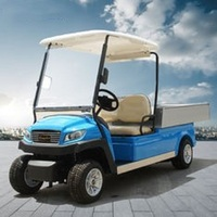 CE approved multi-color options custom electric vehicle buggy carts