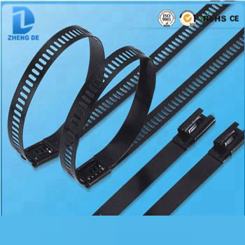 Black 304 316 Flame Retardant Stainless Steel Cable Tie