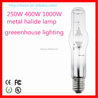 Professional China Factory MH 250w Metal Halide Lamp flood light