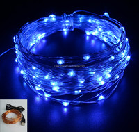 USB LED Blue 33ft 100 LEDs LED String Light