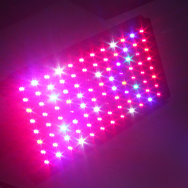 High Power IP67 Led Grow Light 200w with no fans Veg Bloom Switchable For Blooming Flower for horticulture farm equipment