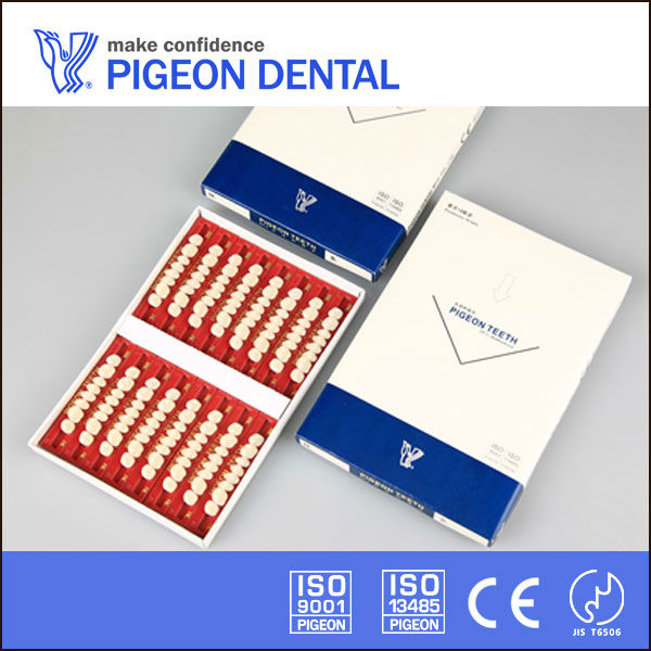 PIGEON ceramic false teeth,16 sets,molar type