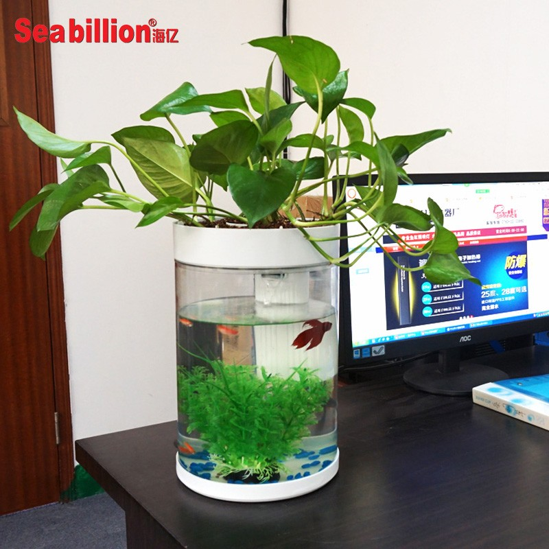 High quality acrylic forest plant fish tank and aquarium for Eco fish tank