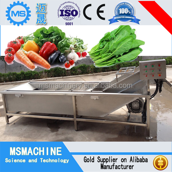 High quality multifuctional fruit and vegetable washer/apple washer for sale
