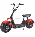 Harley Fastest Scooter 1000W 60V Fat Electric Scooter Citycoco Electric Scooter (C05)