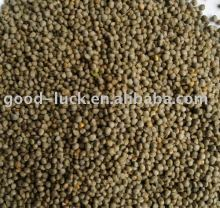 brown perilla seed