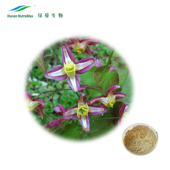 Factory Supply Epimedium Leaf Extract Icariin 60% Powder by HPLC CAS No: 489-32-7